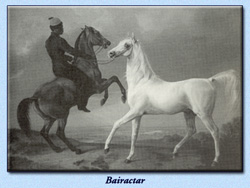 Painting of Bairacter